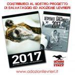 Calendari GACI 2017
